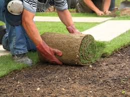 Top Landscaping Companies In Dubai