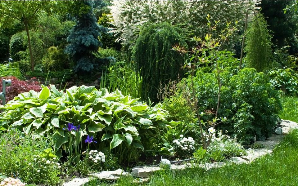 Landscape And Gardening Services